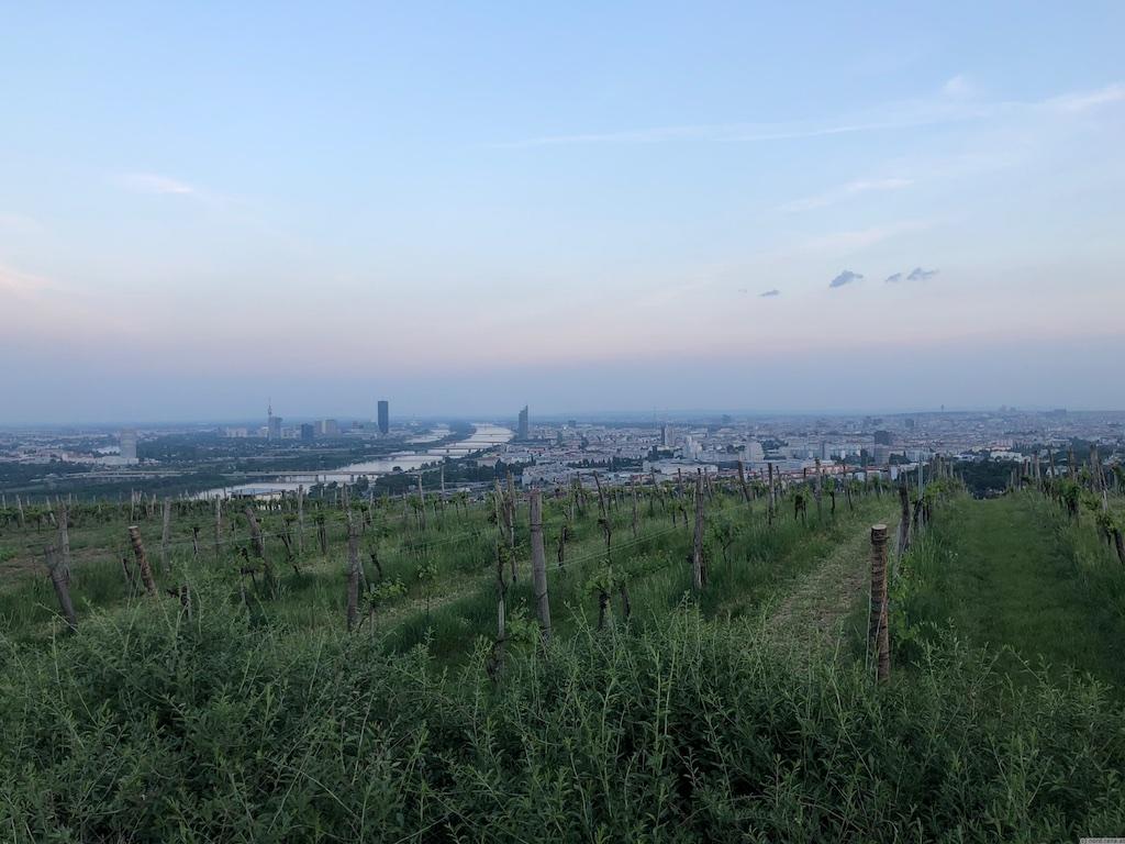 Abendhimmel über Wien