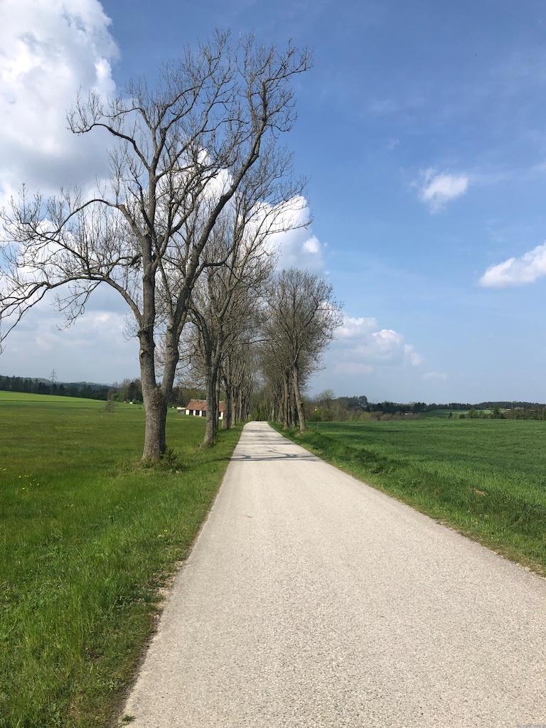 Straße ...