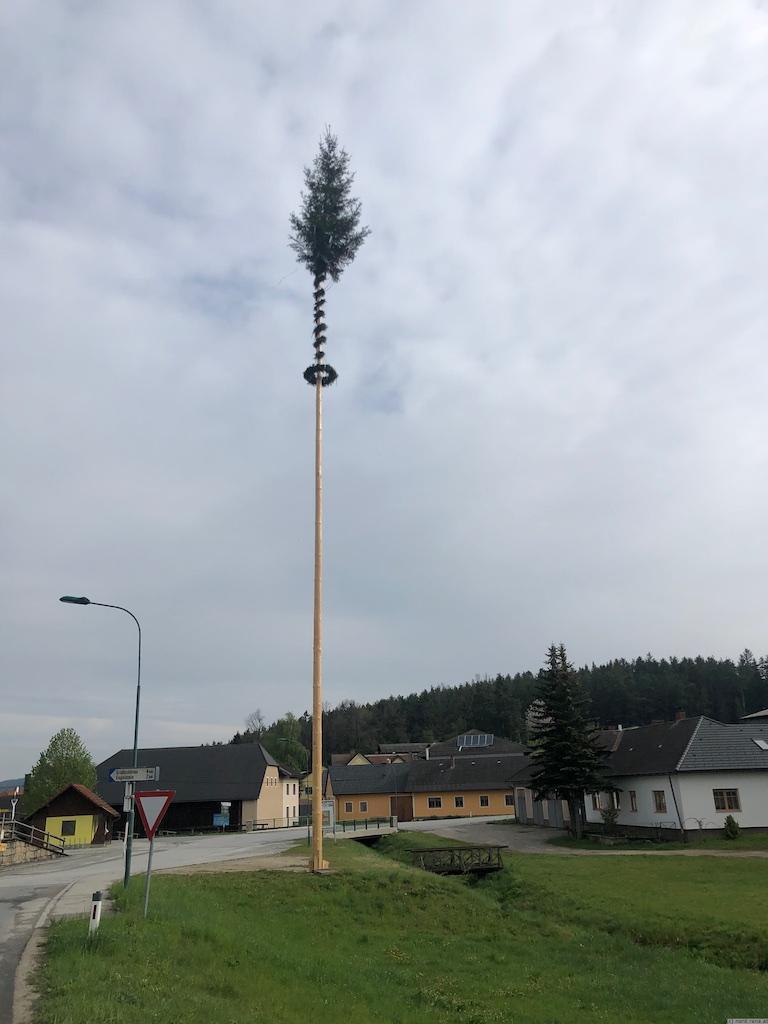 Maibaum Großotten