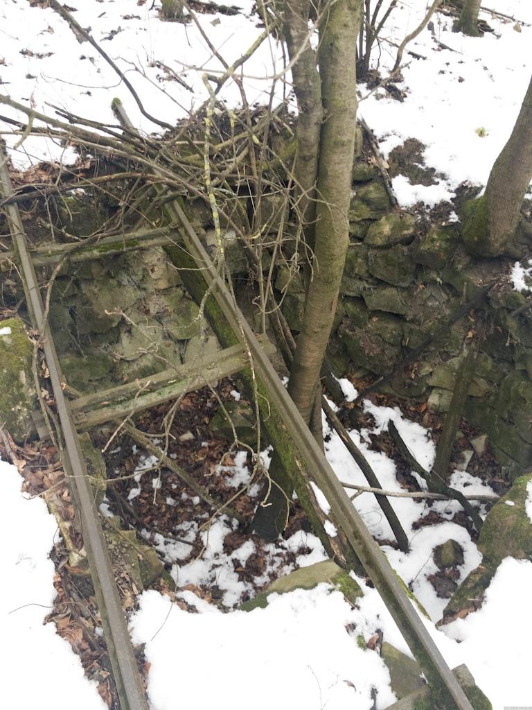 Ein Loch unter den Gleisen in dem ein Baum wächst