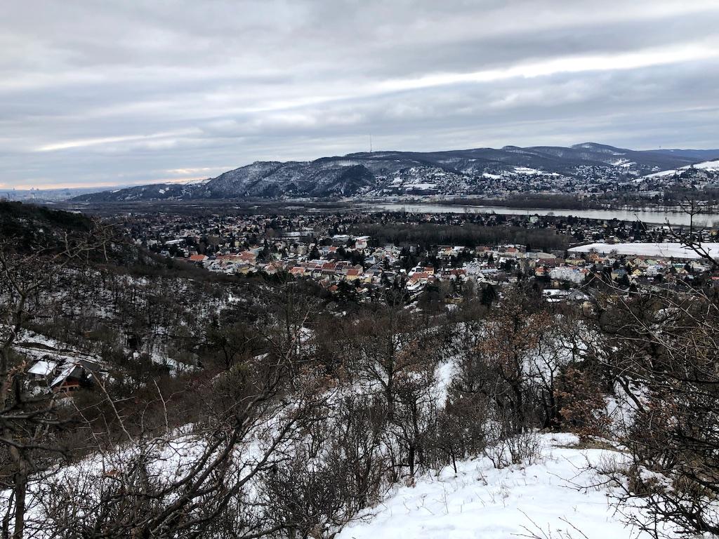 Aussicht vom Bisamberg auf Langenzersdorf