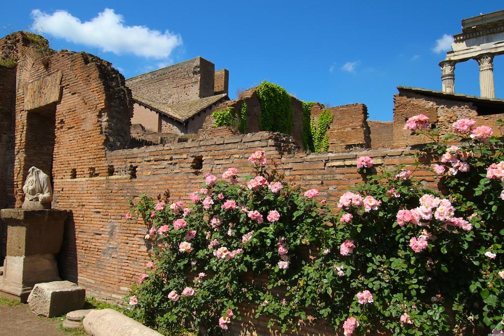 Ziegel und Rosen