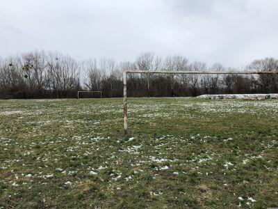 Ein Fußballplatz mit 2 Toren auf der Donauinsel