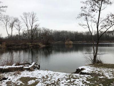 Teich Dechantlacke mit 2 Enten und mit Schnee angezuckerten Wiesen