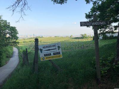 """Tafeln zum """"Heurigen Hirt"""" und """"Stadtwanderweg 1"""" am Zaun, dahinter eine Wiese"""