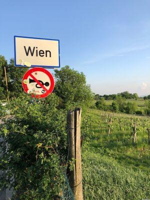 """Ortstafel Wien und die Verbotstafel """"Hupen verboten"""". Im Hintergrund die Weinberge am Nussberg."""