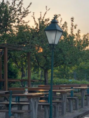 Laterne, Bänke und Tische im Gastgarten des Heurigen Sirbu. Durch die Bäume schimmert der Sonnenuntergang.