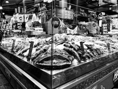 Fische in der Vitrine eines Fischgeschäfts