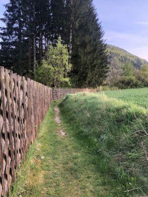 Am Zaun entlang