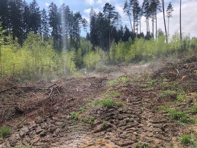 Nach Waldarbeiten
