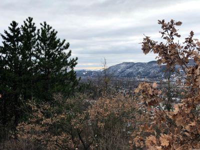 Aussicht auf den Leopoldsberg