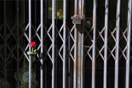 Rose im Gitter vor einem Geschäft